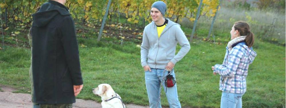 Die Erziehungskurse werden in kleinen Trainingsgruppen abgehalten und in verschiedenen Trainingsstufen angeboten. Für jedes Mensch-Hund-Team findet sich also ein passender Platz.