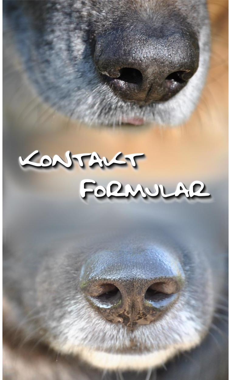 Das Kontakt-Formular ist der richtige Platz um alle Fragen direkt an mich zu stellen.